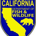 Lead-free hunting will begin across California on July 1
