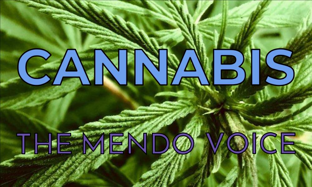 Mendocino Voice cannabis graphic