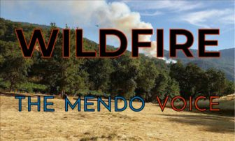 Lightning fire in Yolla Bolly Wilderness reaches 100 acres (updated 8 p.m. 6/18)